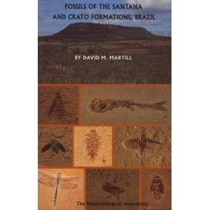 Product - 05. Fossils of the Santana and Crato Formation Image