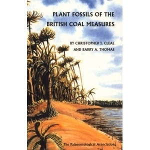 Product - 06. Plants of the British Coal Measures Image