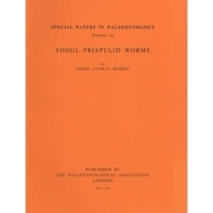 Product - 020 Fossil priapulid worms. Image