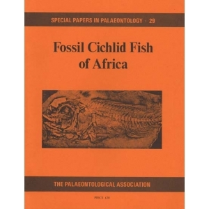Product - 029 Fossil cichlid fish of Africa. Image