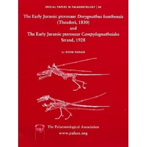 Product - 080 Early Jurassic pterosaur Dorygnathus banthensis (Theodori, 1830) & The early Jurassic pterosaur Campylognathoides Strand, 1928 Image