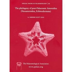 Product - 085 The phylogeny of post-Palaeozoic Asteroidea (Neoasteroidea, Echinodermata) Image