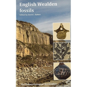 Product - 14. English Wealden Fossils Image