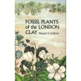 Product - 01. Fossil plants of the London Clay Image