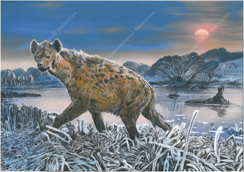 Postcard #6 - Pleistocene, Kirkdale Cave, North Yorks