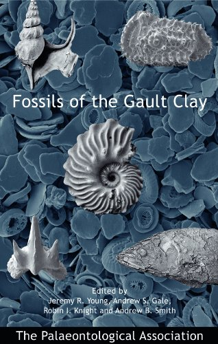 No. 12 - Fossils of the Gault Clay - Cover