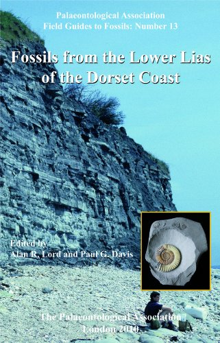 No. 13 - Fossils from the Lower Lias of the Dorset Coast - Cover