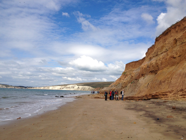Newsletter Number 90 - Field-trippers on the beach on the Isle of Wight