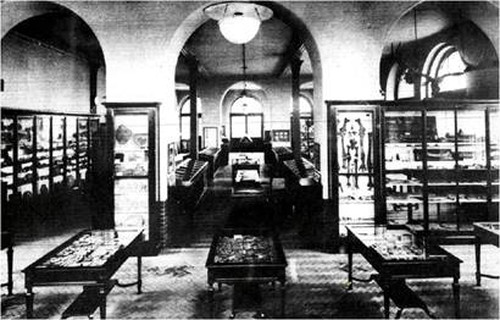 Interior of the Geology Museum in the late 1920s
