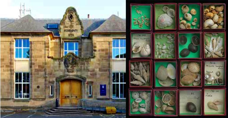 Behind the Scenes at the Museum: The Cockburn Geological Museum